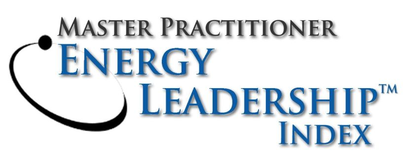 Master Practitioner - Energy Leadershp Index